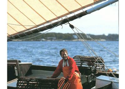 Lobstering Under Sail