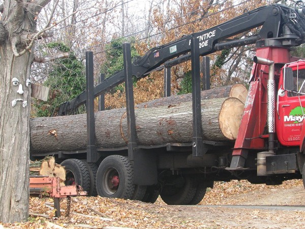 Timber-Delivery